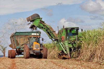 Pratique cette machine ramasseuse de canne à sucre !